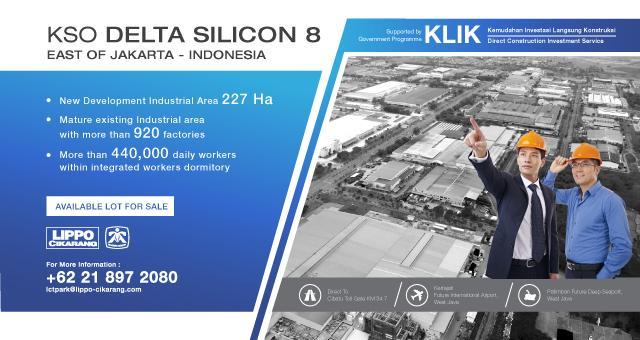 delta-silicon-8